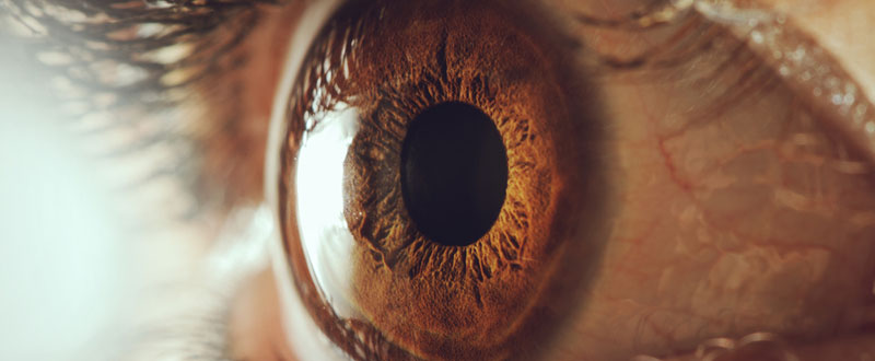 What is the Correct Refractive Surgery in Thin Corneas?
