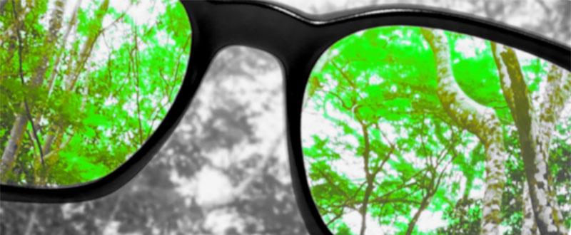 वर्णांधता: रंग-बोध की अक्षमता (कलर ब्लाइंडनेस – Color Blindness in Hindi)