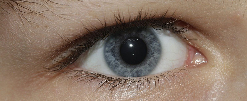Eye Dilation: Know Its Importance & Details